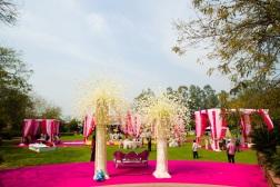 Elements wedding decor Sahiba wedding Photo Tantra stage gazebos