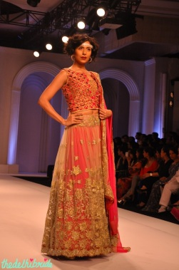 Didn't like the cutwork blouse but otherwise it was a pretty lehenga