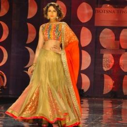 IBFW 2013 Jyotsna Tiwari 10