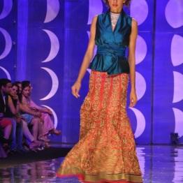 IBFW 2013 Jyotsna Tiwari 15