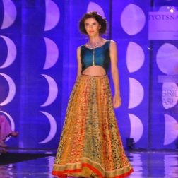IBFW 2013 Jyotsna Tiwari 16