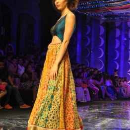 IBFW 2013 Jyotsna Tiwari 17