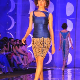 IBFW 2013 Jyotsna Tiwari 3