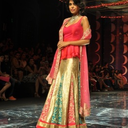 IBFW 2013 Jyotsna Tiwari 5