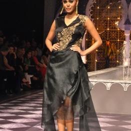 IBFW 2013 Raghavendra Rathore 40