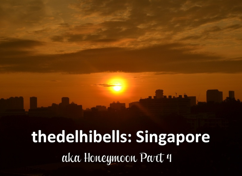 thedelhibells Singapore aka honeymoon part 4
