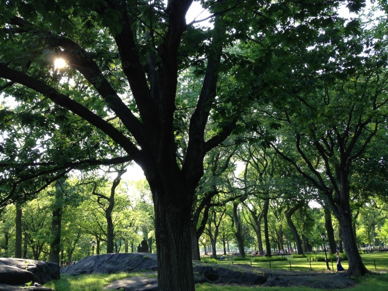 where to visit central park 2