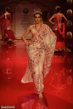 Ethnic design sari
