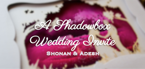 A Shadowbox Wedding Invite Shonan & Adesh | thedelhibride Indian weddings blog