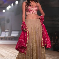 Gold work on deep beige lehenga with Silk Bralette Top (blouse) & Jamnagar Silk Dupatta - Monisha Jaising - Amazon India Couture Week 2015