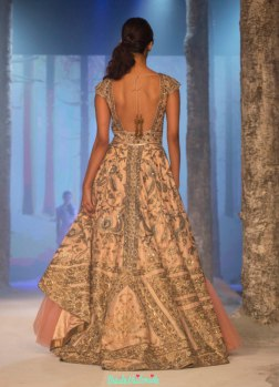 JJ Valaya - Shaded Jacket Lehenga with Heavily Embroidered Jacket and shaded pink light net lehenga - BMW India Bridal Fashion Week 2015 back