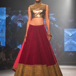 Shantanu & Nikhil - Patina Gold Blouse with Embroidered Work and Red Lehenga with Antique Gold border - BMW India Bridal Fashion Week 2015