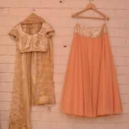 Peach light lehenga with heavy sequin gold blouse