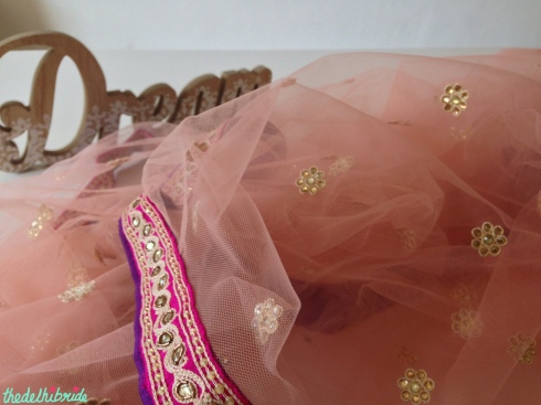 Frontier Raas - a pink net dupatta I bought as part of a suit fabric set